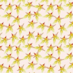 Star Flower pink spoonflower