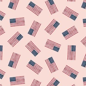 (extra small) American Flag - toss pink - LAD19