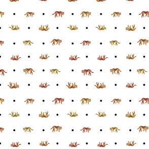 tiger dots