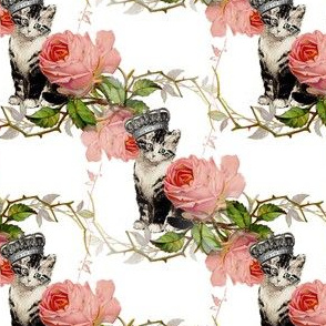 Kitten with Crown Vintage Pink Roses