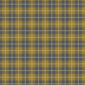 Camp Plaid Slate Dark