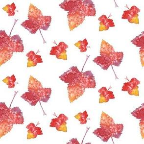 Bright Watercolor Fallen Leaves