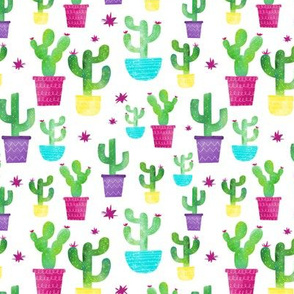 Watercolor Cactus In Colorful Pots - Small