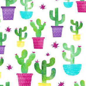 Watercolor Cactus In Colorful Pots - Large