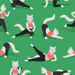 Fitness Cats on green