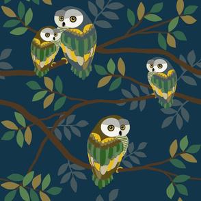 Owlsome Owls