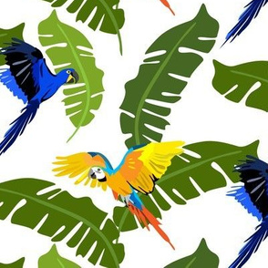 flying parrots and exotic leaves - white