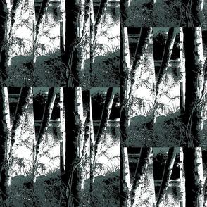 Trees _2