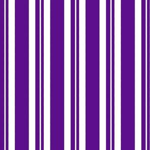 Dapper Vest Stripes Violet - Adult
