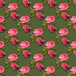 Camellia Garden Chinoiserie Printemps Moyenne