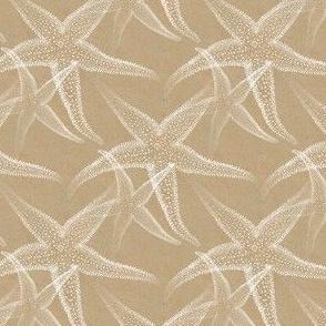 Starfish Sand Beach in white and tan