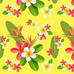 strelitzia bouquet jaune