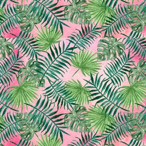 Palm Leaves on a Pink Background
