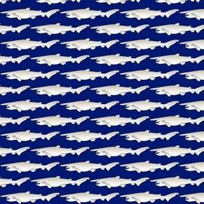 Goblin Shark on dark blue