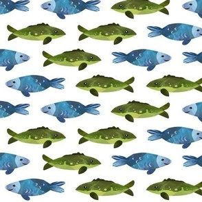 Blue + Green Fish