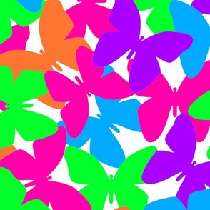 Butterfly Rainbow Colorful Collage