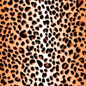 Black and brown leopard spots