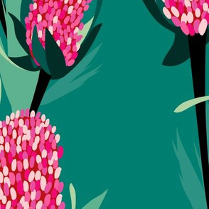 Pink Banksia in Green Background