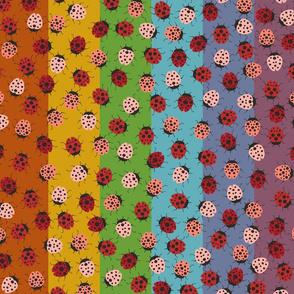 Ladybug Retro Rainbow