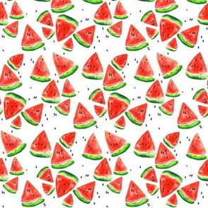 Mini Watercolor Watermelons on White