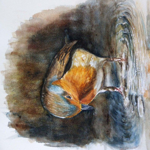 little cute robin watercolor