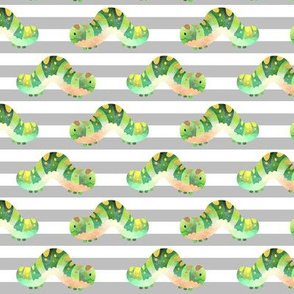 Happy Caterpillars (gray stripe)