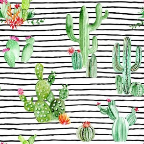 Cactus and Succulents // Black and White Stripes