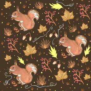 Autumnal squirrel