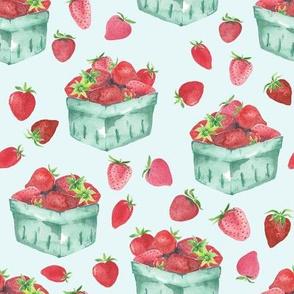Strawberry Picking // Aqua Spring
