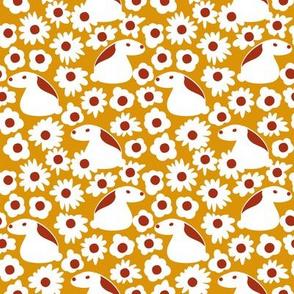daisies and rabbits