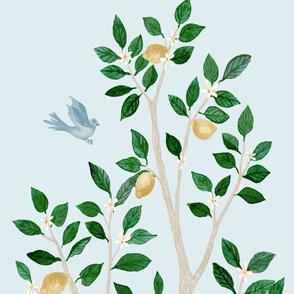 Custom Citrus Grove Megan LEMON TREE
