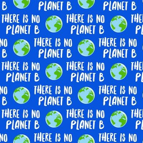 there is no planet b - earth blue - LAD19BS