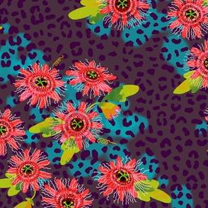 passionflower jaguar - dusk