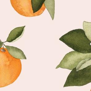 Large Orange Blossoms on Blush