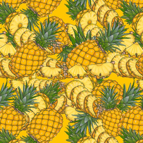 Fruity Moments- pineapple slices yellow