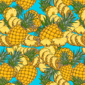 Fruity Moments- pineapple slices sky blue