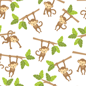 Cute Jungle Monkeys