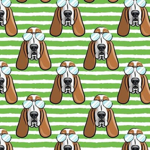 basset hound - sunnies - green stripes - dogs wearing sunglasses - LAD19