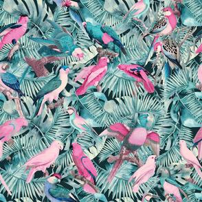 Exotic Jungle Birds