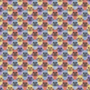 Small Alpaca pride - colorful party