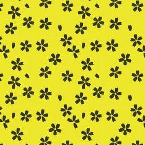 Sakura | Bumblebee