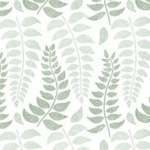 leaf fronds in sage greens on white