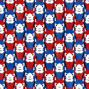 Alpaca pride - Patriotic stripes