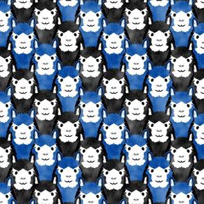 Alpaca pride - blue stripes