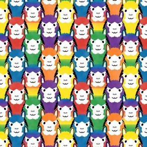 Alpaca pride - all rainbow