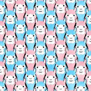 Alpaca pride - pink and blue