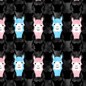 Alpaca pride - spotlight pink and blue