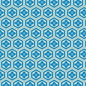 Kikkou | Cool Blue