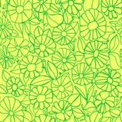 Izzy_Lemon-Lime