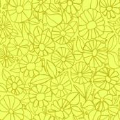 Izzy_Lemon_Olive